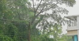 বান্দরবানে থেমে থেমে বৃষ্টি, বইছে ঝড়ো বাতাস