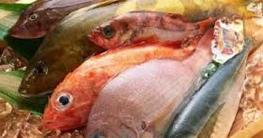 নতুন প্রজাতির সামুদ্রিক মাছ'বাংলাদেশিয়াস'বৈশ্বিক তালিকায় অন্তর্ভুক্ত